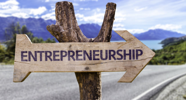 Entrepreneurial profile